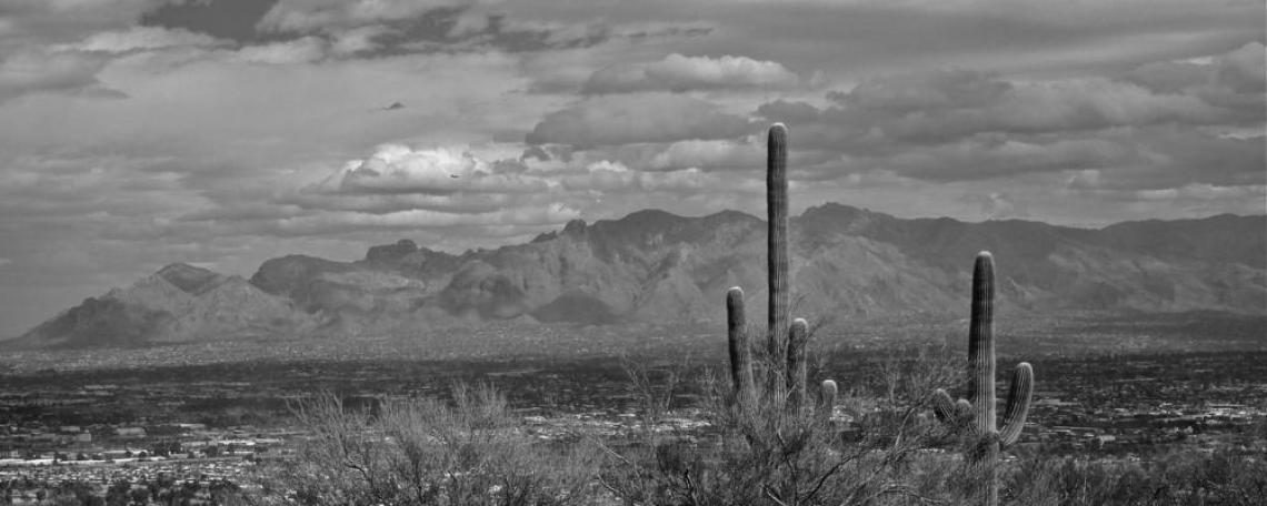 The view from Tumamoc Hill, west of Tucson. Photo: Mindy Butterworth